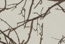45 Лесные ветви